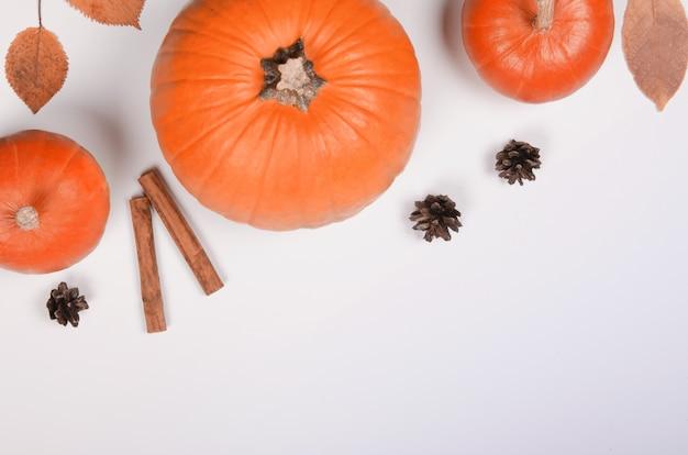 Herbsthintergrund mit orange kürbis, zimt und blättern auf weißem hintergrund
