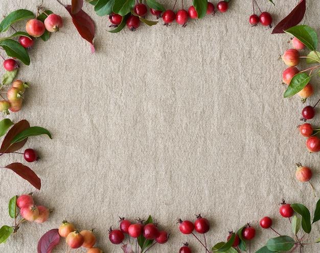Herbsthintergrund mit rahmen von beeren, kleinen wilden äpfeln und blättern