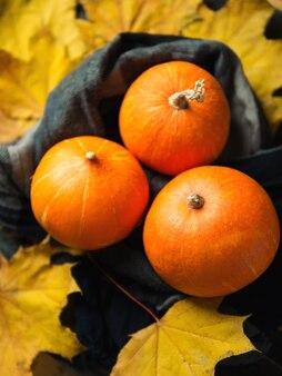 Herbsthintergrund mit trockenen blättern und kürbisen für danksagung