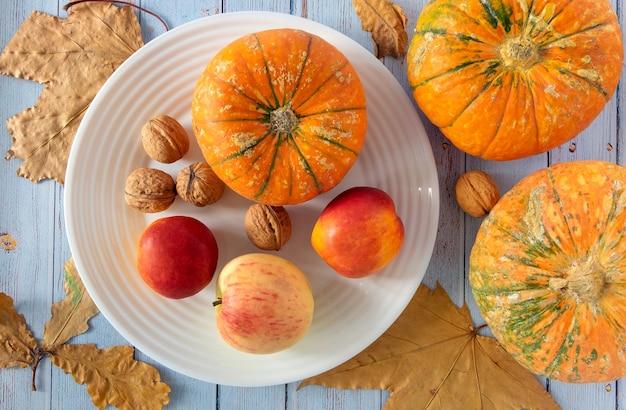 Herbsthintergrund mit weißem teller, kleinen kürbissen, früchten, walnüssen.