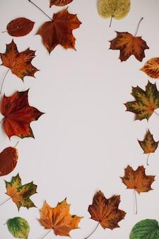 Herbsthintergrund und -rahmen mit getrockneten blättern