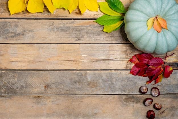 Herbstholz mit gelb-roten und grünen blättern, kürbis und kastanie.