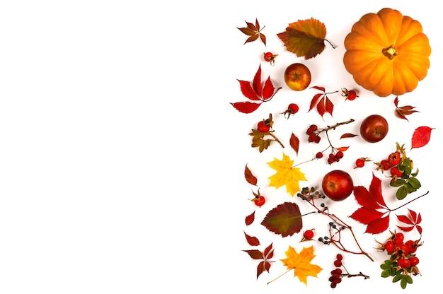 Herbstkomposition. hergestellt aus herbstlaub, beeren und kürbis. draufsicht