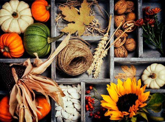 Herbstkomposition in holzkiste