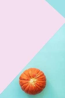 Herbstkomposition. kürbisse auf blau und pink
