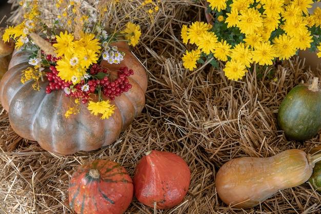 Herbstkomposition mit kürbissen im rustikalen stil