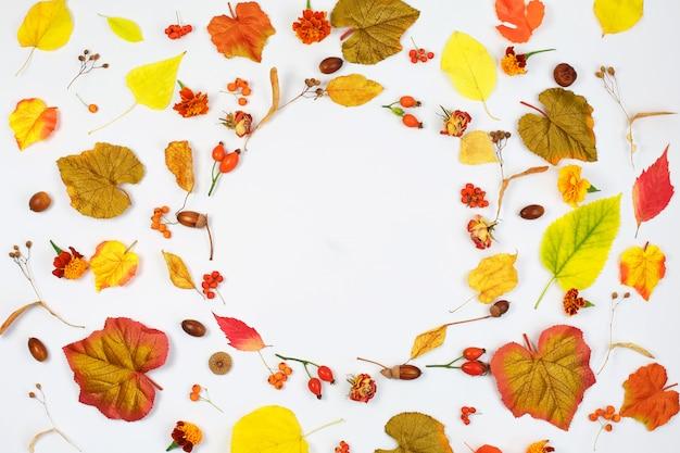 Herbstkomposition. rahmen aus getrockneten blumen und herbstlaub. flach liegen