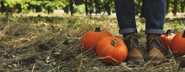 Herbstkonzept mit kürbissen und frau in jeans und stiefeln