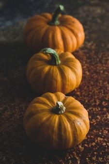 Herbstkonzept mit orange saisonkürbisen und ahornblättern.