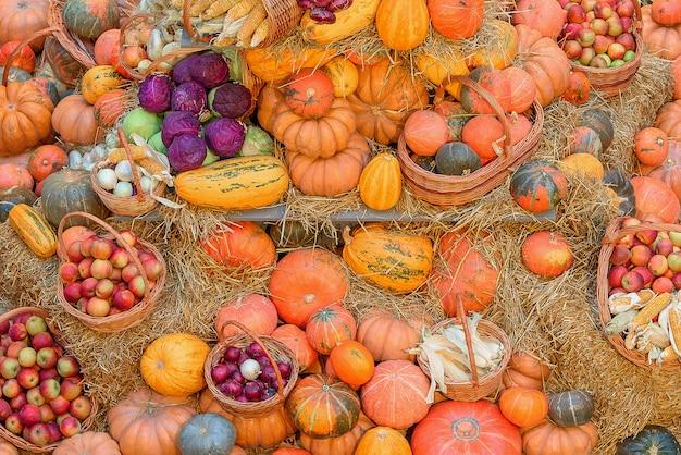 Herbstkonzept mit saisonalem obst und gemüse. herbsthintergrund des saisonalen gemüses auf dem heu.