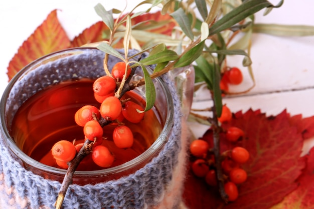 Herbstkräutertee-sanddorn gestrickt in einer tasse