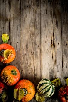 Herbstkürbise in einer tabelle