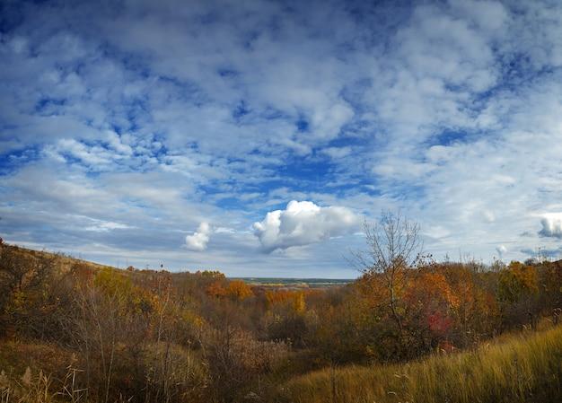 Herbstlandschaft. blick auf den wald mit gelbem laub eines bewölkten himmels.