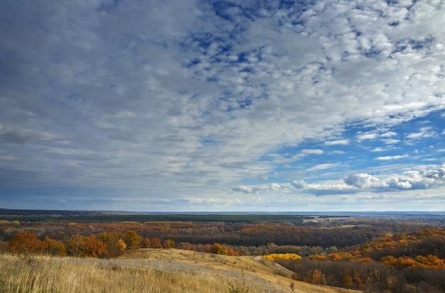 Herbstlandschaft. blick auf den wald mit gelbem laub