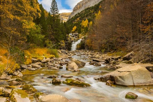 Herbstlandschaft des schönen waldes und des wasserfalls