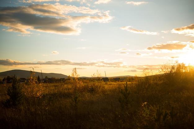 Herbstlandschaft in einem feld mit vergilbtem gras am abend, russland, ural, september