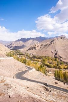 Herbstlandschaft in ladakh-region, indien. tal mit bäumen und gebirgshintergrund im fall.