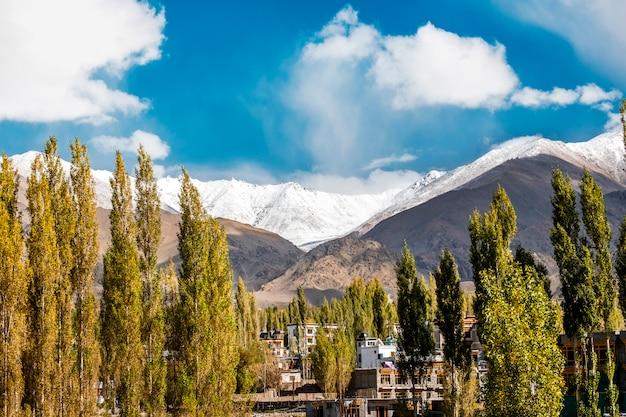 Herbstlandschaft in leh ladakh region, indien