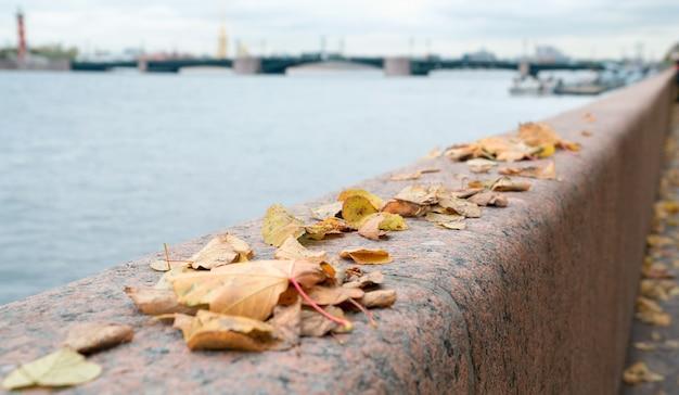 Herbstlandschaft, laub auf der granitbrüstung des newa-dammes.