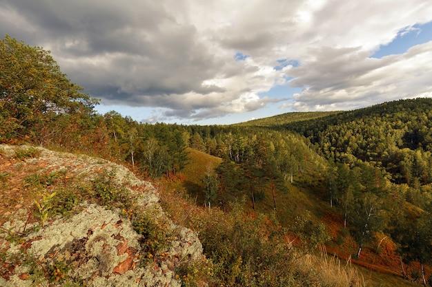 Herbstlandschaft mit bergen bedeckt mit waldgelbem gras und felsen im vordergrund