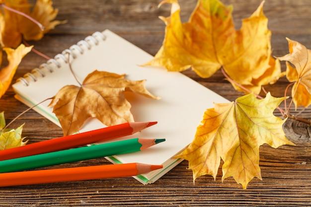 Herbstlaub auf dem alten blatt papier