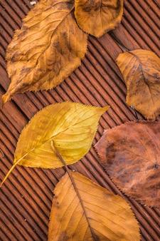 Herbstlaub auf dem holzboden