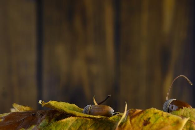 Herbstlaub auf einem braunen hintergrund des hölzernen brettes