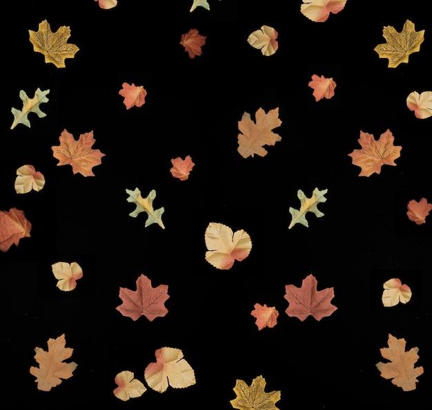 Herbstlaub auf schwarzem hintergrund