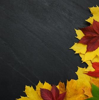 Herbstlaub auf tafel