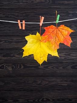 Herbstlaub hing an der wäscheleine auf holz