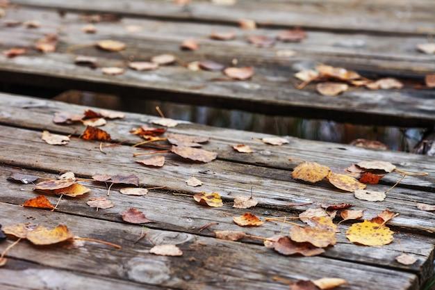 Herbstlaub über altem hölzernem hintergrund auch im corel abgehobenen betrag. gefallenes blatt auf holz am see. spätherbst zeit.