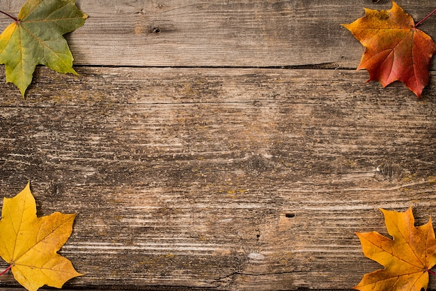 Herbstlaub über holzoberfläche mit kopienraum