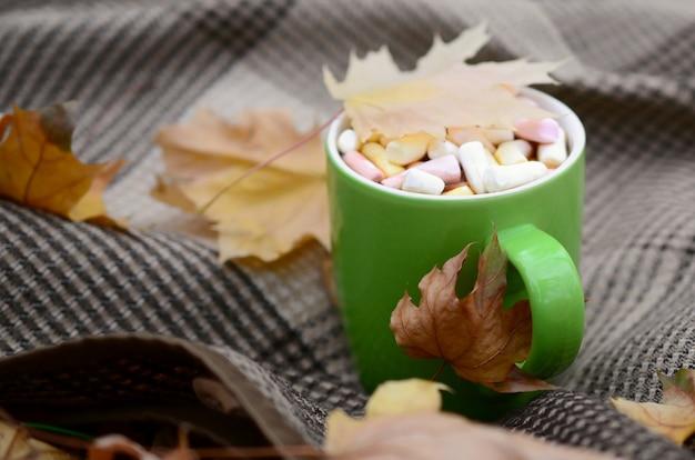 Herbstlaub und heißer dampfender tasse kaffee liegt auf kariertem plaid draußen