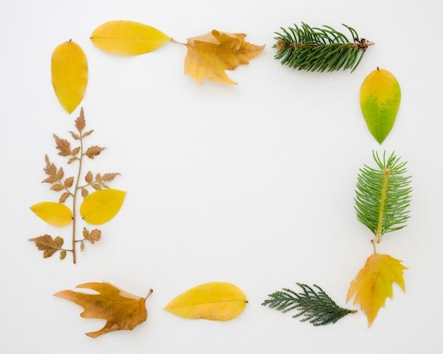 Herbstlaubebenenlage mit kopienraum