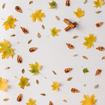 Herbstlaubmuster auf weißer wand. flach liegen.