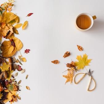 Herbstlaubmuster mit kaffee- oder teetasse auf weißer wand. flach liegen.