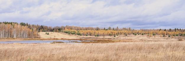 Herbstliche ebene landschaft. fall niedriger himmel mit wolken, bäume mit gelben fallenden blättern, ein teich und ein feld mit verdorrtem gras. banner