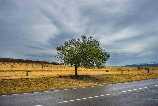 Herbstliche landschaft der region kachetien
