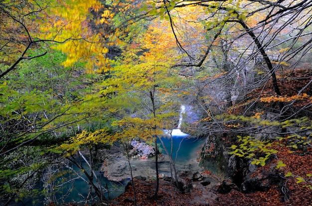 Herbstliche landschaft des naturreservats des urederra-flusses. navarra. spanien