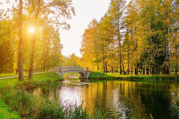 Herbstliche parklandschaft mit see. herbst. eine neue saison. schöne landschaft. gelbe bäume. fotos für gedruckte produkte . ein artikel über den herbst.