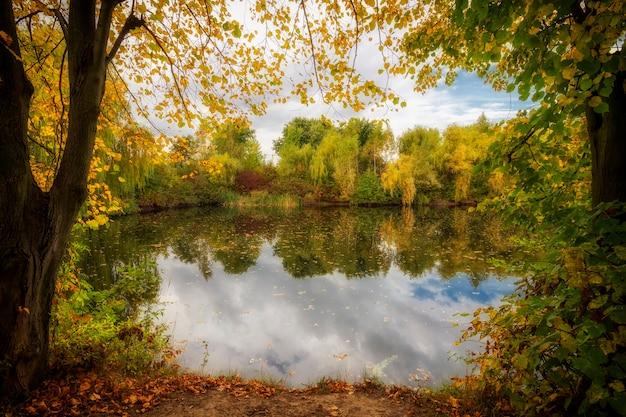 Herbstliche sonnige landschaft mit see und gelben blättern