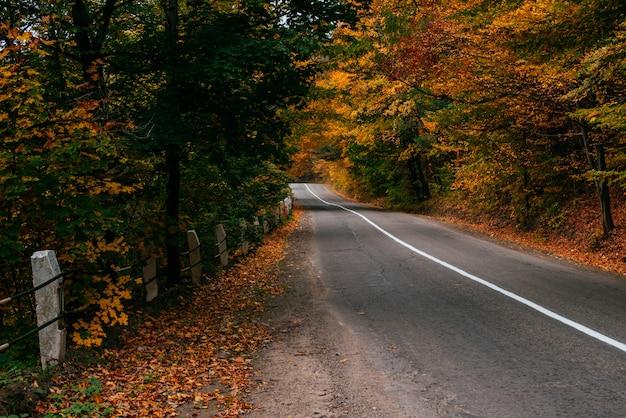 Herbstliche straßenlandschaft