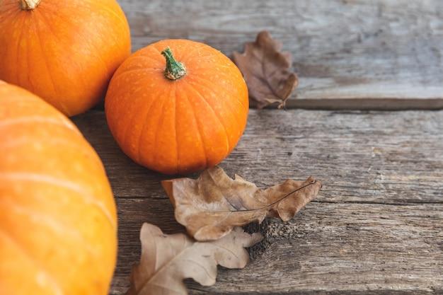 Herbstlicher hintergrund. natürliche herbstfallansichtkürbisse auf hölzernem hintergrund. inspirierende oktober- oder september-tapete. wechsel der jahreszeiten reifes bio-lebensmittelkonzept, halloween-party thanksgiving day