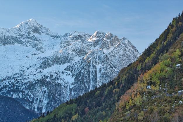 Herbstlicher kontrast zwischen farben und schnee.