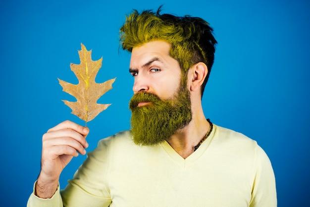 Herbstlicher modetrend. herbstmann. modeherbstmannporträt mit gelben ahornblättern auf lokalisiertem hintergrund.