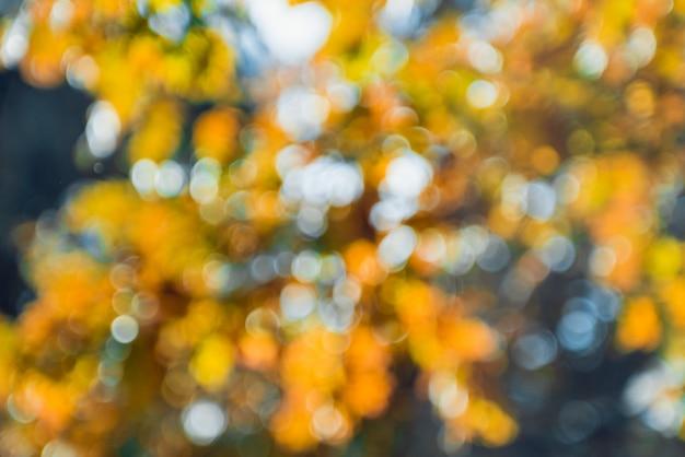 Herbstlicher park. unscharfer hintergrund. helles buntes bokeh.