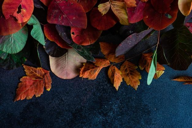 Herbstlicher rahmen mit gelben blättern