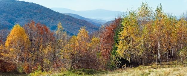 Herbstliches bergpanorama und birkenwald vor. (karpaten, ukraine). stichbild mit zwei schüssen.
