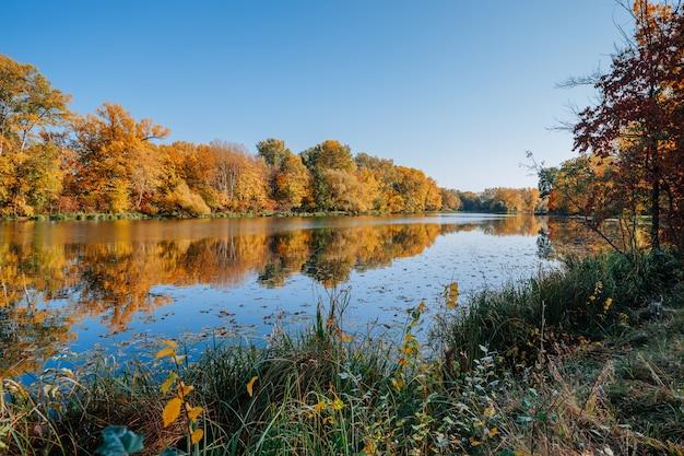 Herbstliches flussufer mit bunten bäumen