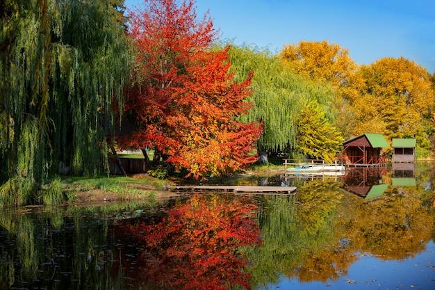 Herbstliches seeufer an einem klaren tag
